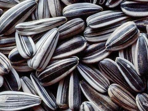 при диете можно есть семечки