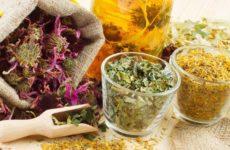 Травы для кожи лица — для сухой, жирной и проблемной кожи. Сборы трав для очищения кожи и придания ей упругости