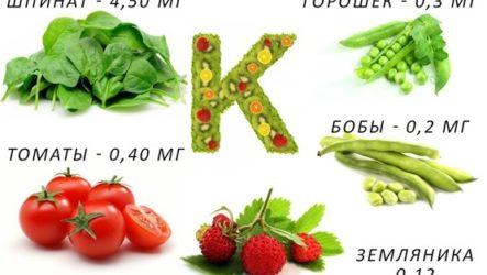 Что такое витамин k — в каких продуктах содержится и к чему приводит его недостаток?